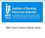 Ibps Clerk Result 2019 Ibps Clerk Prelims Result Date Time Read All Details