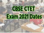 Ctet Exam 2021 Cbse Ctet 2020 Exam Date Is 31 January 2021 Ctet Admit Card 2021 Download