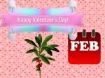 February Days List 2021: फरवरी महीने में आने वाले महत्वपूर्ण दिनों की लिस्ट