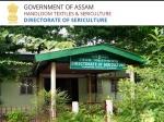 Sericulture Assam Recruitment 2021: असम में 8वीं पास के लिए सरकारी नौकरी, 3 फरवरी तक करें आवेदन