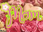 Mothers Day 2021 Special Story: ये हैं दुनिया की 7 सबसे अलग मां, होती हैं इंसान से ज्यादा संवेदनशील