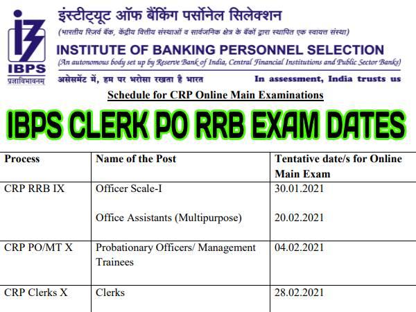 IBPS Clerk PO RRB Exam Date 2021: आईबीपीएस कैलंडर 2021 जारी, क्लर्क पीओ आरआरबी परीक्षा कब होगी जानिए