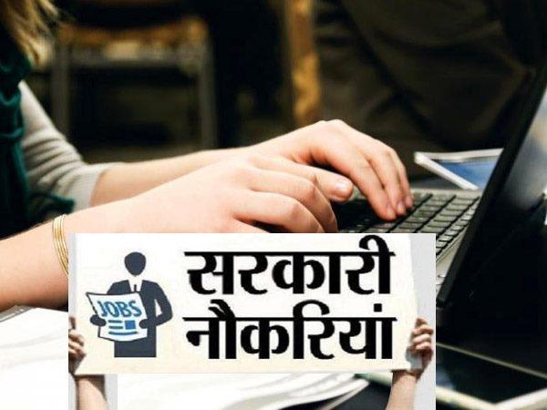 RSMSSB Recruitment 2021: राजस्थान वन विभाग में निकली 1128 भर्ती, 10वीं पास 22 जनवरी तक करें आवेदन