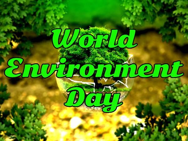 World Environment Day 2021 Theme History: विश्व पर्यावरण दिवस 2021 की थीम, इतिहास, महत्व और कोट्स