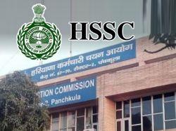 Haryana Staff Selection Commission Hssc Clerk Result 2019 Declared Hssc Gov In