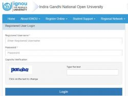 Ignou Result Declared December Tee 2019 Exam Download Grade Card