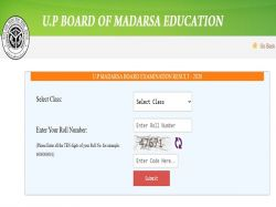 Up Madarsa Board Result 2020 Topper List Upbme Result 2020 Pass Percentage And Awards