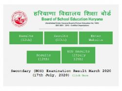 Hbse 10th 12th Result 2020 Certificates Download