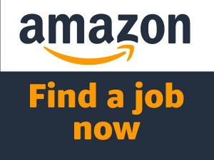 Amazon Jobs 2020 Amazon India Temporary Workers Hire During Lockdown