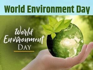 Career In Environmental Science Institute Job Salary